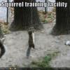 Pentingkah Training Itu?